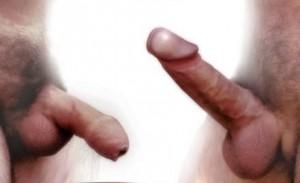 Een man wordt geil dan gaat zijn penis stijgen
