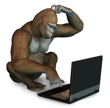 Heb je een externe beeldscherm voor je webcamwerk nodig? nee maar wij helpen je om alles te installeren voor je webcamwerk